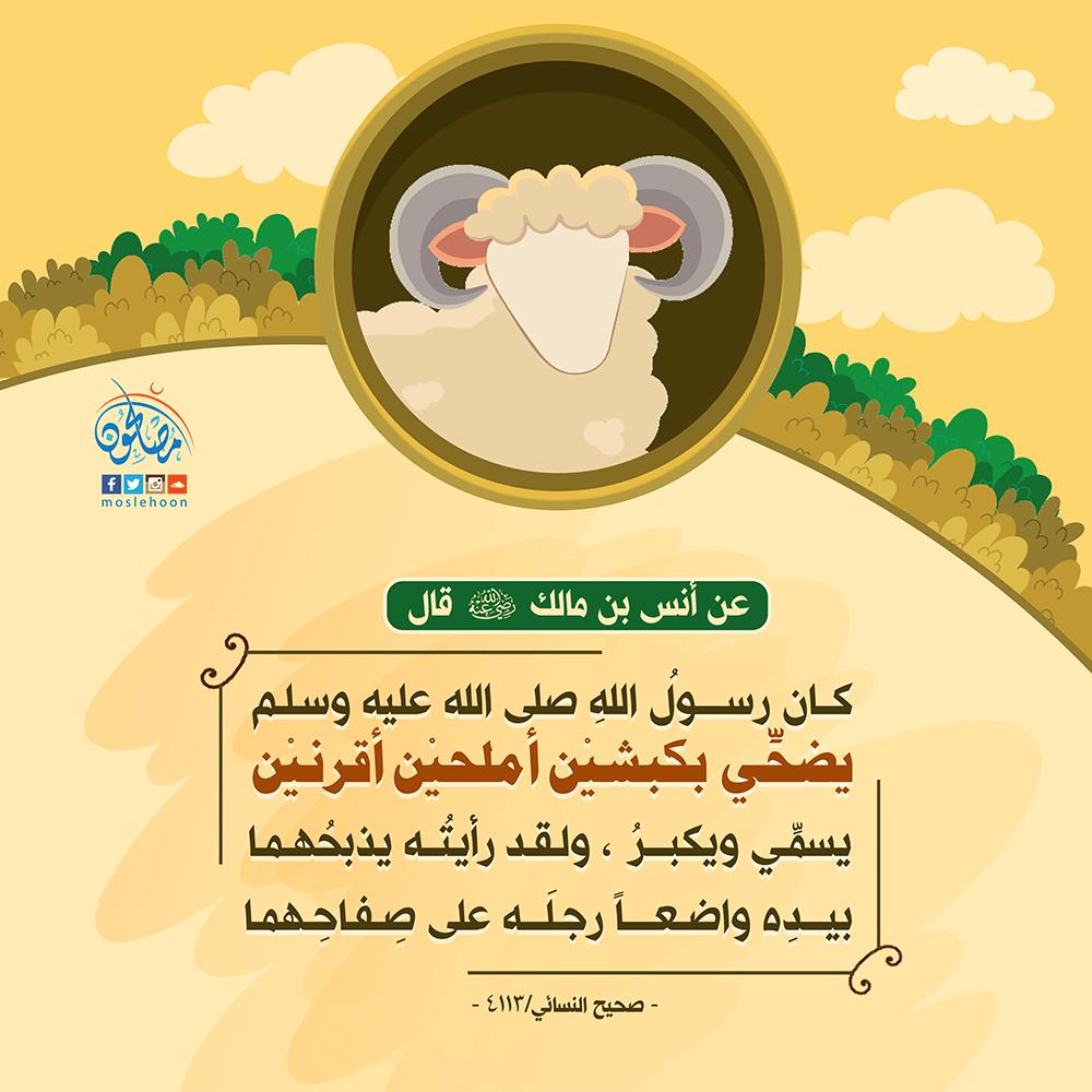 حديث أنس بن مالك رضي الله عنه في أضحية النبي ﷺ